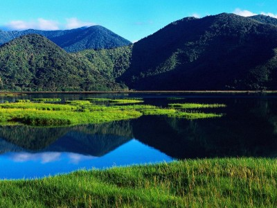 https://bigtix.files.wordpress.com/2012/07/newzealandlandscape1.jpg?w=300